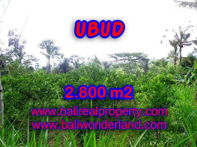 Jual Tanah murah di UBUD TJUB375 - investasi property di Bali