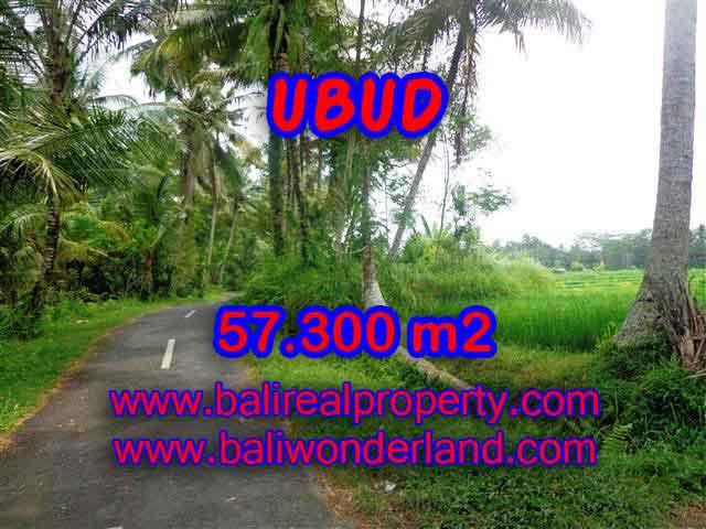 TANAH MURAH DIJUAL DI UBUD BALI TJUB377 - PELUANG INVESTASI PROPERTY DI BALI