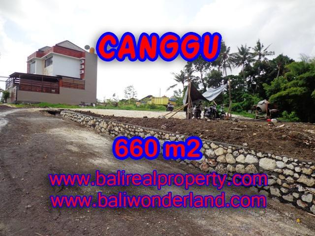 DIJUAL TANAH MURAH DI CANGGU TJCG149 - PELUANG INVESTASI PROPERTY DI BALI