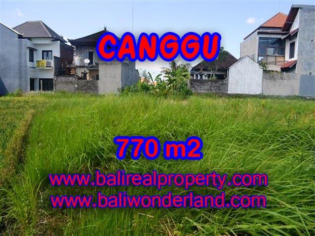 TANAH DI CANGGU DIJUAL TJCG148 - INVESTASI PROPERTY DI BALI