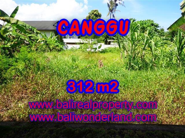 Jual Tanah murah di CANGGU TJCG145 - Kesempatan investasi property di Bali