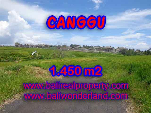 DIJUAL MURAH TANAH DI CANGGU TJCG137 – INVESTASI PROPERTY DI BALI