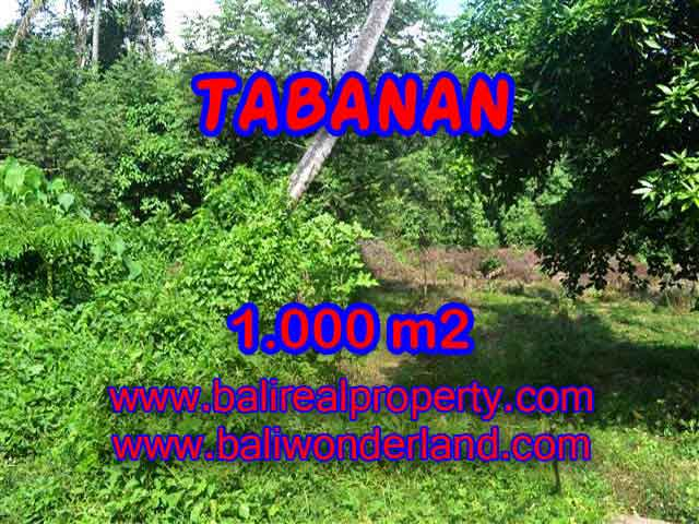 Tanah di TABANAN Bali Dijual murah TJTB114 - investasi property di Bali