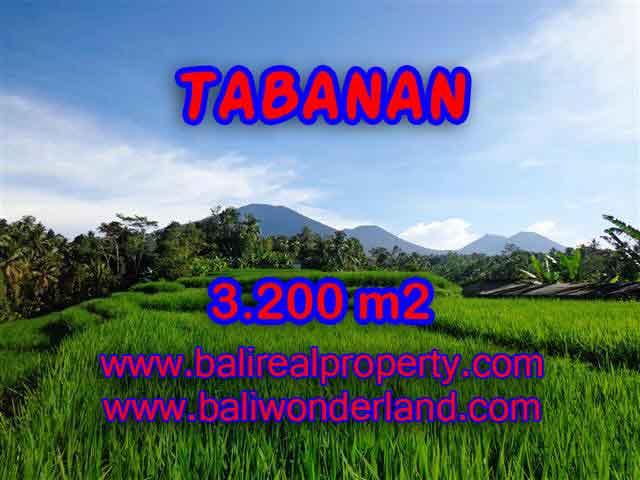 TANAH DIJUAL DI TABANAN CUMA RP 350.000 / M2