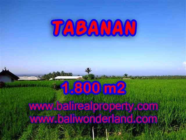 DI JUAL TANAH DI TABANAN BALI TJTB119 - PELUANG INVESTASI PROPERTY DI BALI