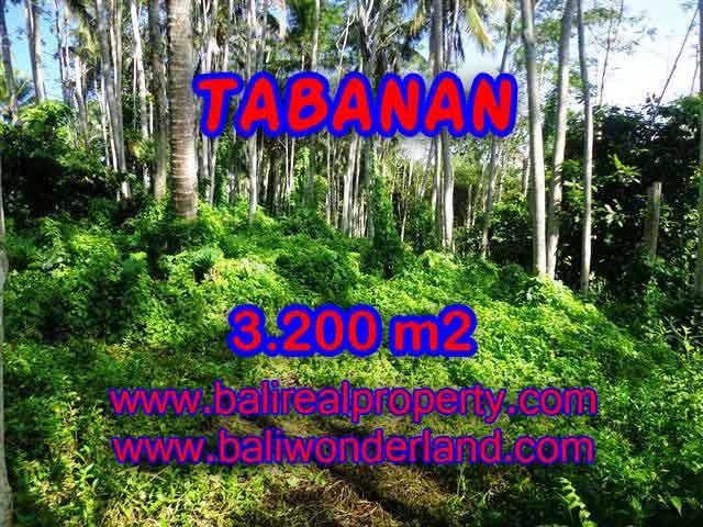 JUAL TANAH DI TABANAN BALI MURAH RP 450.000 / M2 - TJTB120