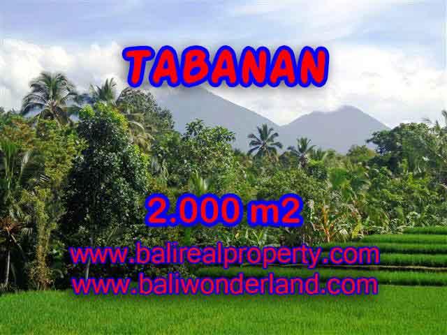 TANAH DI BALI, MURAH DI TABANAN DIJUAL TJTB121 - INVESTASI PROPERTY DI BALI
