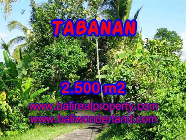 JUAL TANAH DI TABANAN MURAH TJTB122