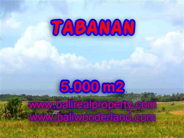 Jual Tanah murah di TABANAN TJTB124 - Kesempatan investasi property di Bali