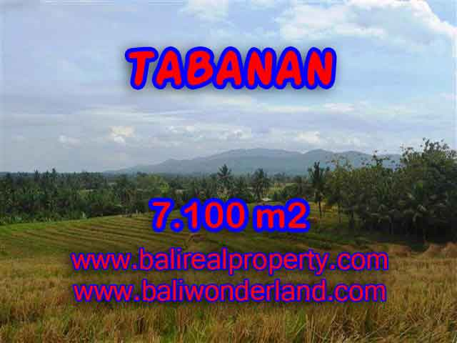 DIJUAL TANAH DI TABANAN BALI MURAH TJTB125