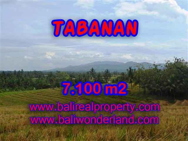 INVESTASI PROPERTI DI BALI - JUAL TANAH DI TABANAN BALI TJTB125