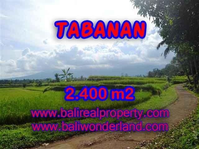 Investasi Properti di Bali - Murah ! Tanah di TABANAN Bali Dijual TJTB126