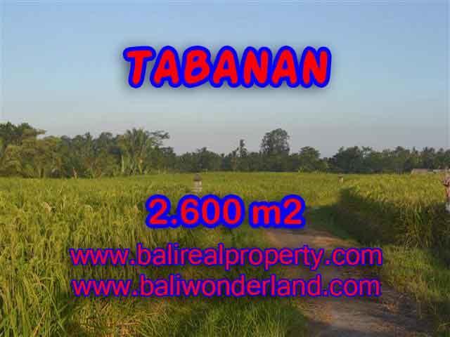 INVESTASI PROPERTI DI BALI - TANAH MURAH DI TABANAN DIJUAL CUMA RP 420.000 / M2
