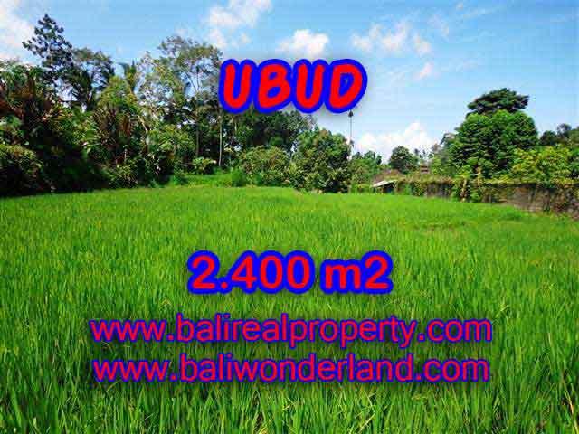 MURAH ! TANAH DI UBUD BALI RP 1.450.000 / M2 - TJUB390 - INVESTASI PROPERTY DI BALI