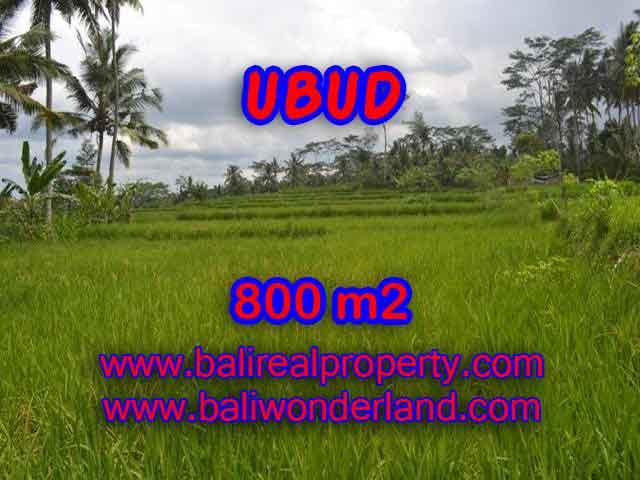 MURAH ! TANAH DIJUAL DI UBUD BALI TJUB393 - INVESTASI PROPERTY DI BALI