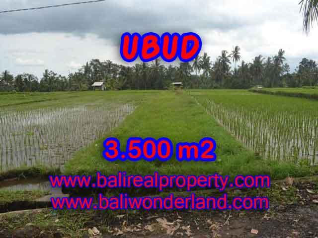 Investasi Properti di Bali - Murah ! Tanah di UBUD Bali Dijual TJUB395