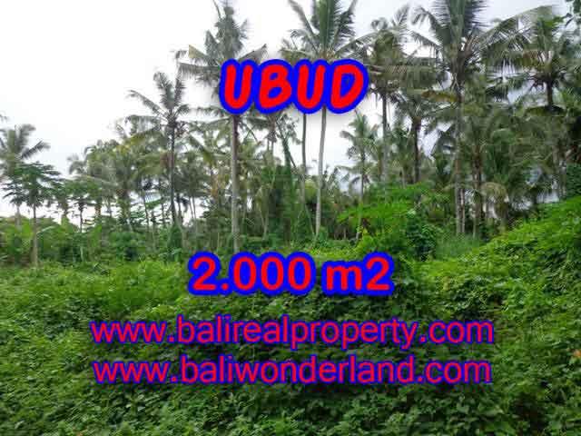 INVESTASI PROPERTI DI BALI - TANAH DIJUAL DI UBUD CUMA RP 2.850.000 / M2
