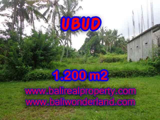 DIJUAL MURAH TANAH DI UBUD BALI TJUB399 - PELUANG INVESTASI PROPERTY DI BALI