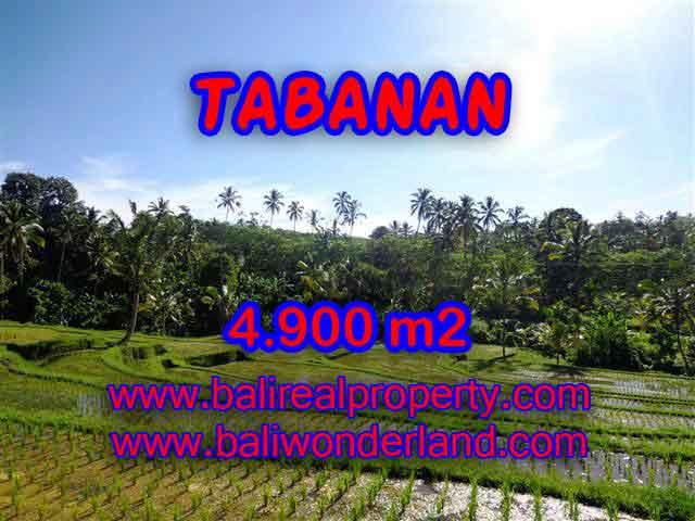 TANAH DI BALI DIJUAL, MURAH DI TABANAN TJTB111 - INVESTASI PROPERTY DI BALI