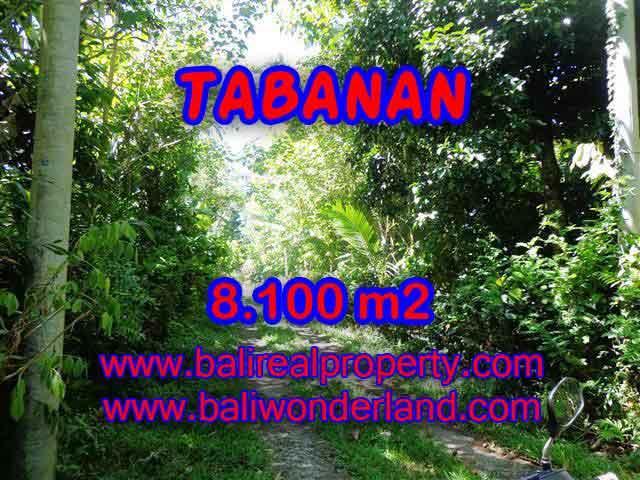 DIJUAL TANAH DI TABANAN BALI MURAH TJTB113 - INVESTASI PROPERTY DI BALI