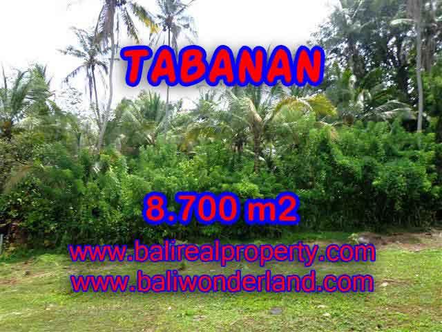 TANAH DI TABANAN MURAH DIJUAL TJTB115 - KESEMPATAN INVESTASI PROPERTY DI BALI
