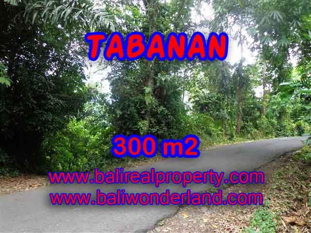 Murah ! Tanah di TABANAN Bali Dijual TJTB116 – investasi property di Bali