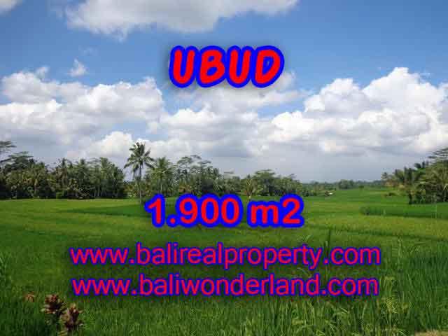 TANAH DI UBUD MURAH TJUB403 - INVESTASI PROPERTY DI BALI