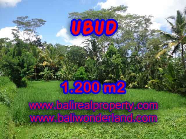 Jual Tanah murah di UBUD TJUB404 - Kesempatan investasi property di Bali