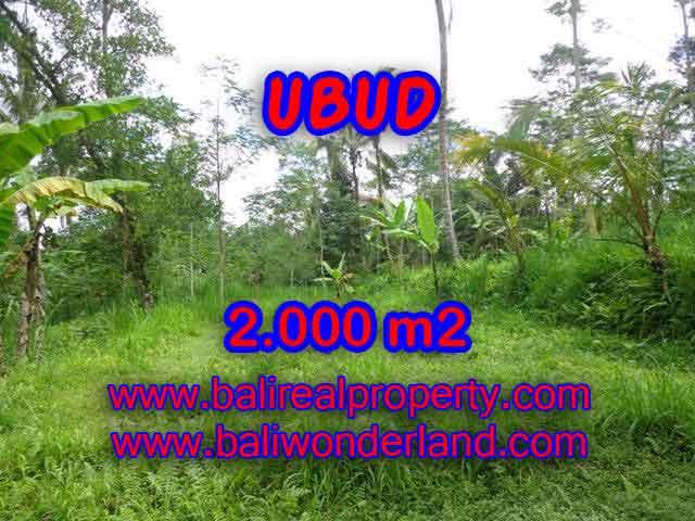 JUAL TANAH DI UBUD RP 850.000 / M2 – TJUB406