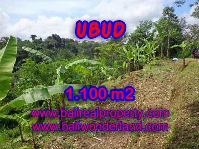 TANAH DIJUAL DI UBUD RP 950.000 / M2 - TJUB407