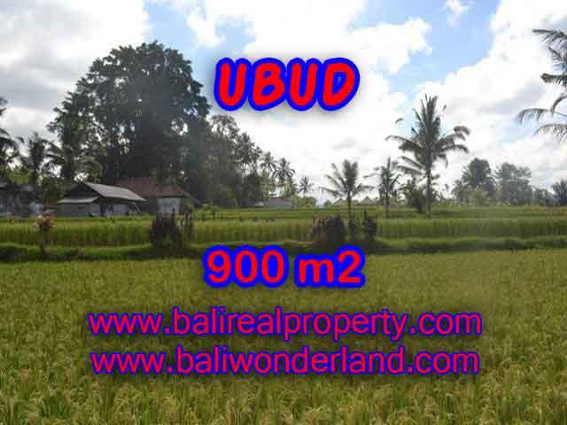 TANAH DIJUAL DI UBUD MURAH TJUB412 - PELUANG INVESTASI PROPERTY DI BALI