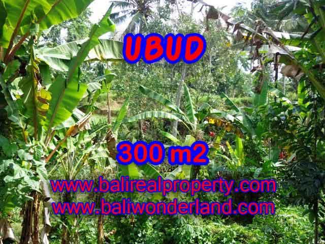 Peluang Investasi Properti di Bali - Jual Tanah murah di UBUD TJUB415