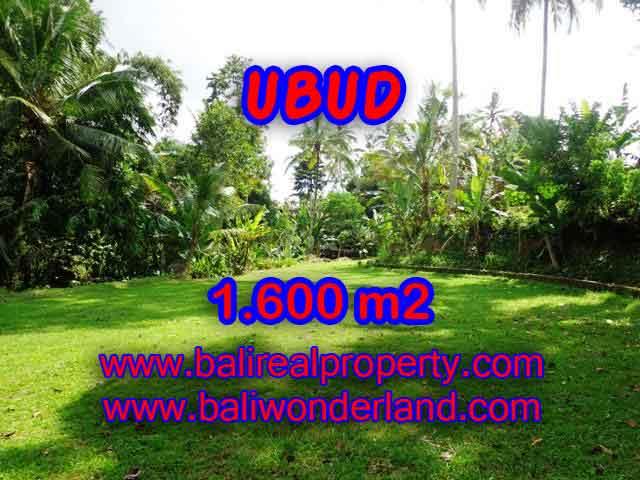 TANAH DIJUAL DI UBUD BALI TJUB416 - PELUANG INVESTASI PROPERTY DI BALI
