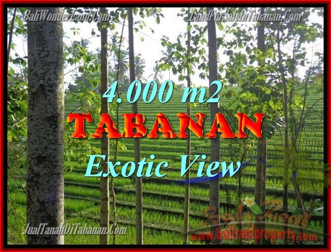 DIJUAL TANAH DI TABANAN BALI TJTB150 - PELUANG INVESTASI PROPERTY DI BALI