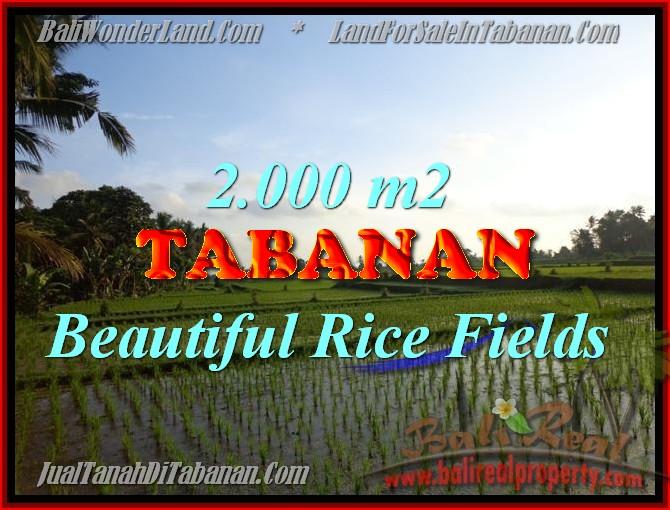 DIJUAL TANAH DI TABANAN RP 500.000 / M2 - TJTB151 - INVESTASI PROPERTY DI BALI