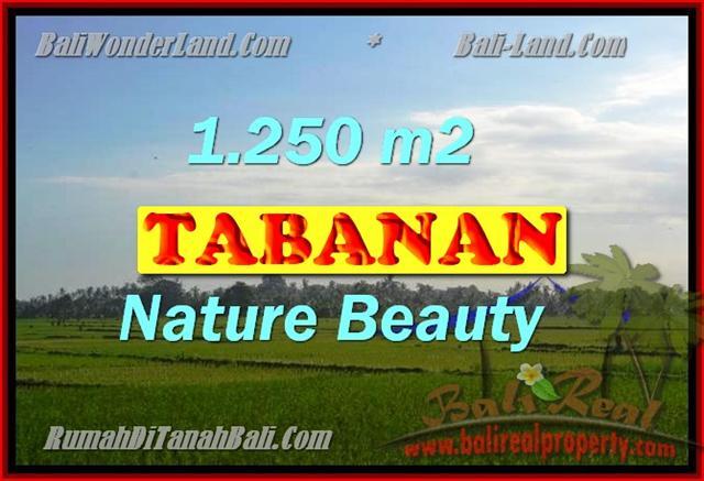 INVESTASI PROPERTI DI BALI - DIJUAL TANAH MURAH DI TABANAN TJTB148