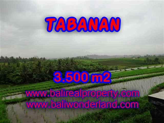 TANAH DI BALI DIJUAL, MURAH DI TABANAN TJTB141 - INVESTASI PROPERTY DI BALI
