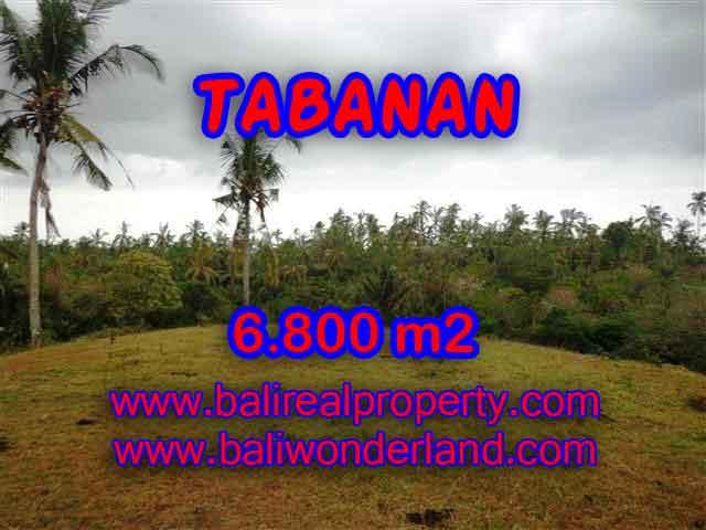 MURAH ! TANAH DI TABANAN BALI RP 320.000 / M2 - TJTB140 - INVESTASI PROPERTY DI BALI