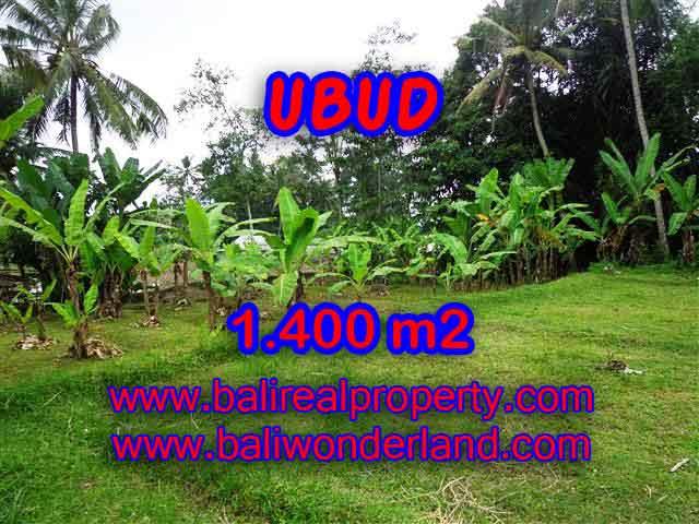 DIJUAL TANAH DI UBUD BALI TJUB419 - PELUANG INVESTASI PROPERTY DI BALI