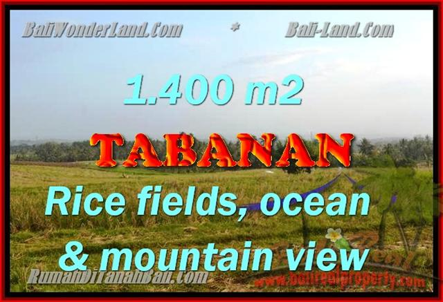 TANAH DIJUAL DI TABANAN MURAH TJTB143 - PELUANG INVESTASI PROPERTY DI BALI