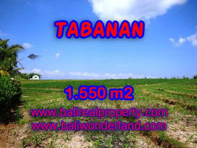 Kesempatan Investasi Properti di Bali - Jual Tanah murah di TABANAN TJTB134