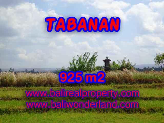 JUAL TANAH DI TABANAN BALI TJTB135 - PELUANG INVESTASI PROPERTY DI BALI