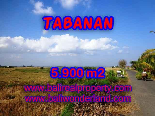 INVESTASI PROPERTI DI BALI - TANAH DI BALI, MURAH DI TABANAN DIJUAL RP 750.000 / M2 - TJTB131