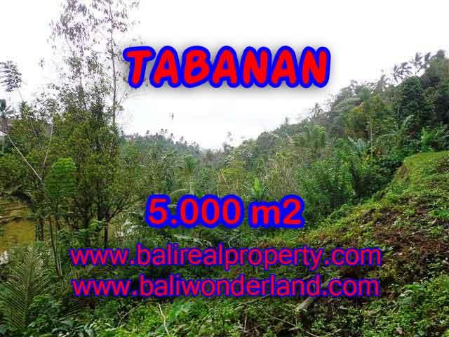 DIJUAL MURAH TANAH DI TABANAN BALI TJTB139 - PELUANG INVESTASI PROPERTY DI BALI