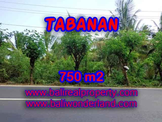 TANAH DIJUAL DI TABANAN RP 1.450.000 / M2 - TJTB138