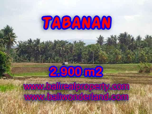 Murah ! Tanah di TABANAN Bali Dijual Rp 470.000 / m2 - TJTB136