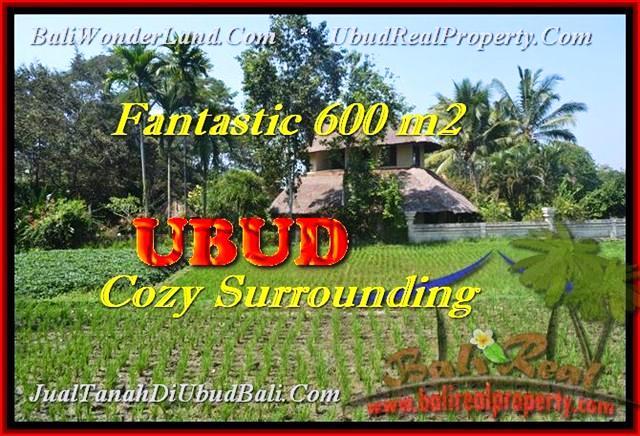 DIJUAL TANAH MURAH di UBUD Untuk INVESTASI TJUB452
