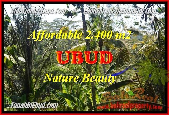 TANAH di UBUD BALI DIJUAL 2400 m2 di Ubud Pejeng