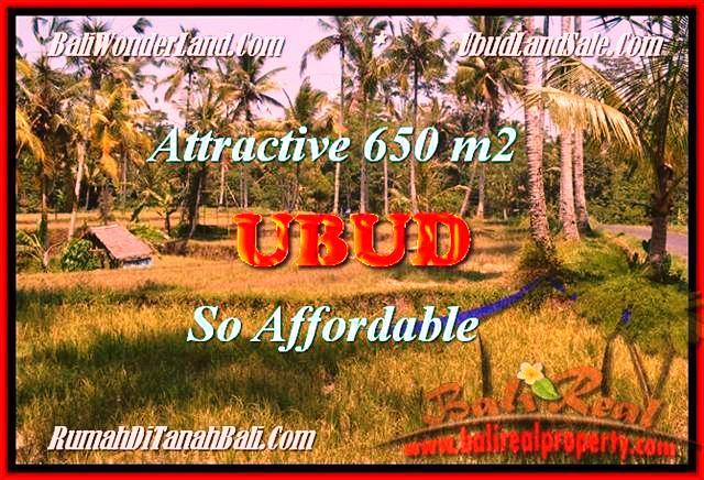TANAH MURAH di UBUD TJUB455