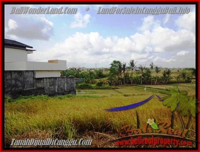 JUAL TANAH di CANGGU BALI 5 Are View sawah lingkungan villa